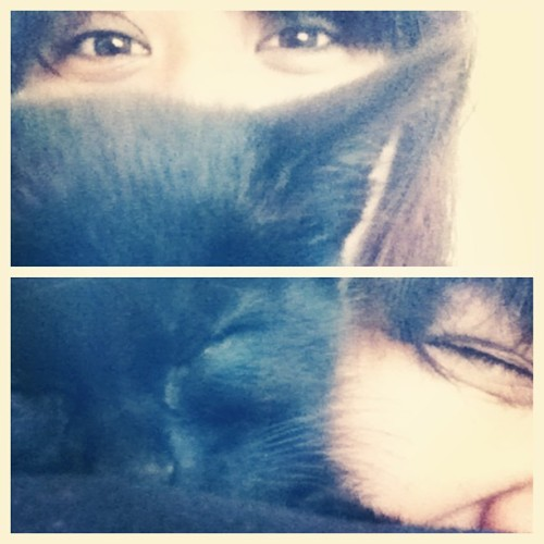 I'm allergic to cats…but she decided to sleep next to my face…lol #cats #sleep #kitty #face #allergic #me #pussy #morning #cute