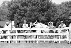 Spectators at the Ox Ridge Horse Show, 1966, Darien, Connecticut