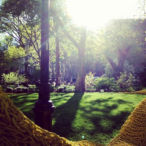 #orlygenger #madisonsquarepark #spring #art #instillation #knit #rope #publicart #nyc #newyorkcity  (at Madison Square Park)