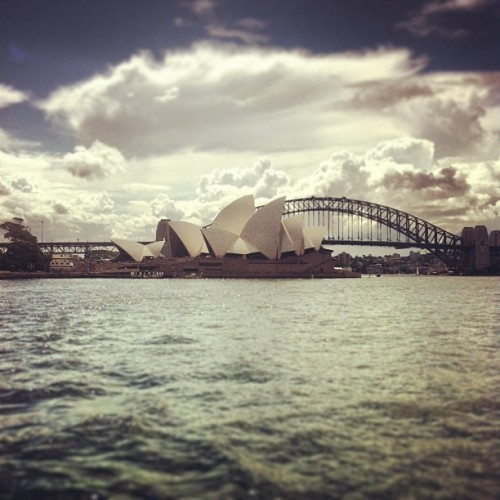 #harbor #sydney #boatcruise