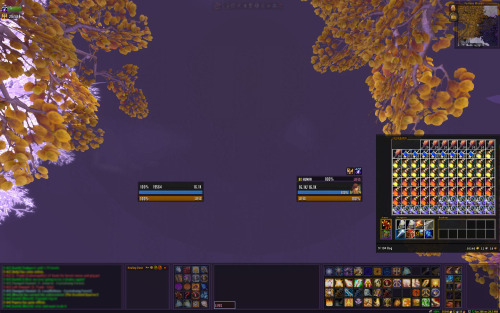 new UI for you guys from the MMO champ healer UI thread courtesy of lyfe