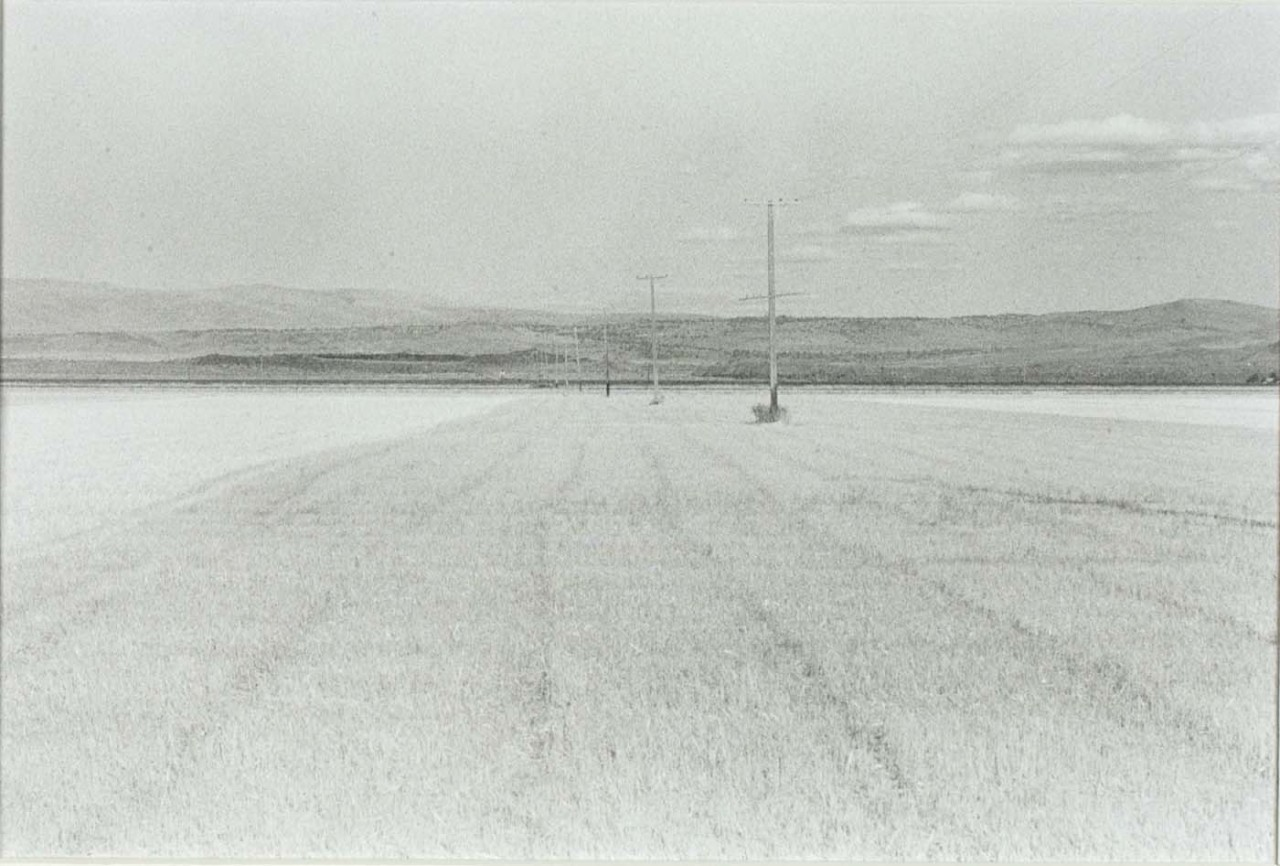 Untitled (wheat fields and telephone poles)   Grayson Mathews   Born: Eugene, Oregon 1948   Died: Medford, Oregon 2007  gelatin silver print  Smithsonian American Art Museum Transfer from the National Endowment for the Arts