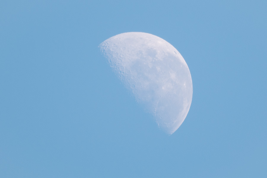 Untitled (Moon), 2013Nikon D90; Nikkor 500mm f/8 N