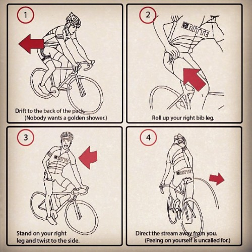 lickypickystickyme:  How to pull out your penis and pee during a ride.What about my vagina, fellows? Gah.