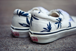 jo-know:  weed vans    what else?!