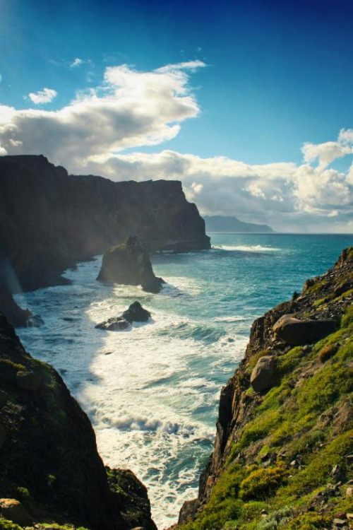 4nimalparty:  wild coast IV (by Dyrk.Wyst)