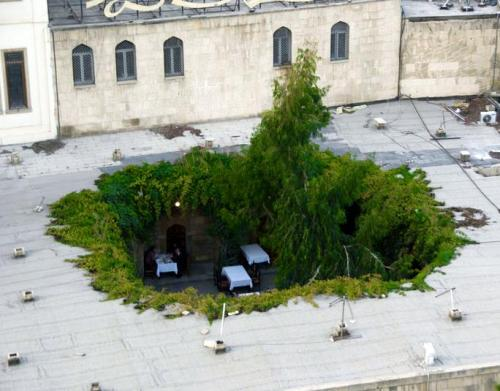 vvisen:  bonsa-i:  pornforblindmagazine:  cafe in Baku  coolest cafe!! i want to go here  whoa
