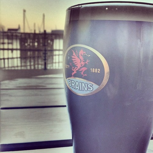 Pint of #Brains in #Cardiff Bay (at Terra Nova)