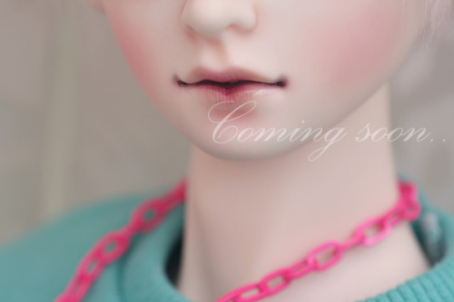 "Napi Doll - ""Miki"" Coming Soon"