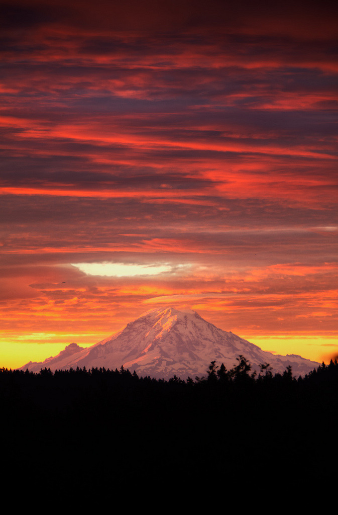 brutalgeneration:  Mt. Rainier - Dawn View from Bainbridge Island (by Mantis of Destiny)