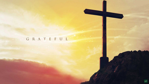 iwilltrustinyou:  Grateful (by Wallpapers Avenue)