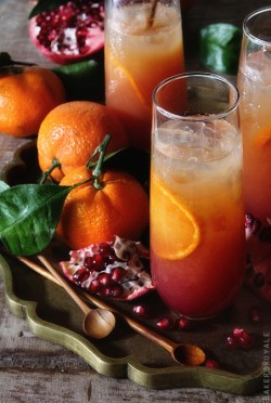 hautefavesdeux:  satsuma and pomegranate campari