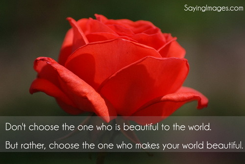 Choose the one who makes your world beautifulFOLLOW SAYING IMAGES FOR MORE GREAT PICTURES QUOTES