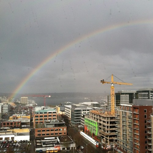 Feb 6: RAINBOW! Maybe these happen a lot in the PNW but it is my first.  And my coworkers were geeking out on it too.  So there!