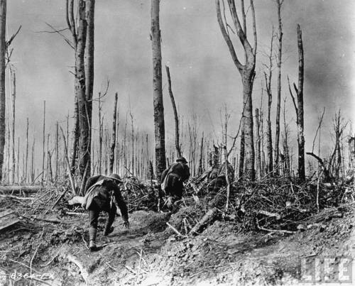 France, 1918   American troops advancing through a forest shattered by artillery fire during World War I.