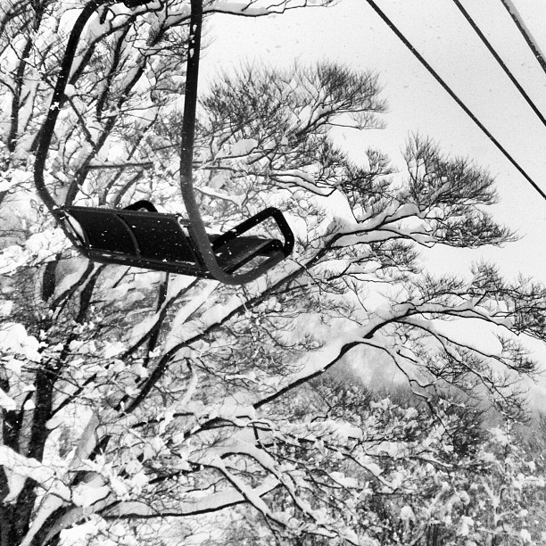 Trees chairs and deep powder in Hakuba.  I heart Japan. (at Cortina Resort)