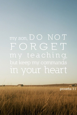 ibibleverses:  Proverbs 3:1Follow us at http://gplus.to/iBibleverses