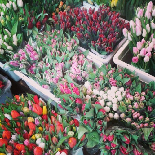 Columbia Flower market,  London