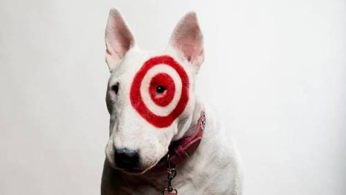 "In this way, Bullseye is the perfect symbol for Target Corp. itself: projecting a colourful, friendly image but at the same time guarded, often silent, and maintaining an iron grip on its message. Even the most benign questions, if they stray off-script, are unwelcome.  —Susan Krashinsky, ""The secret life of Target's mascot, Bullseye"""