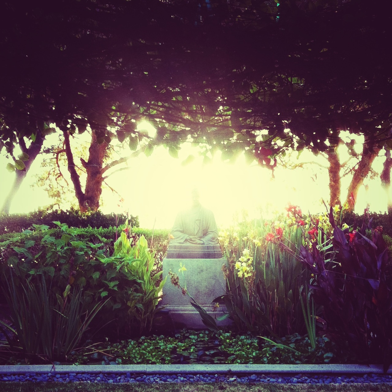 ap0t:  At the Ramakrishna monastery in Trabuco Canyon  *.*