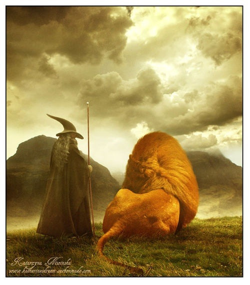 master-meriadoc:  thranduileded:  cryofthealbatross:  A tribute to the friendship between Tolkien and Lewis.  so lovely.  i just d'awwwwed