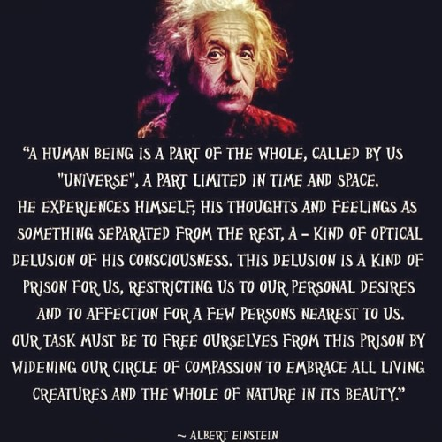 "jrkreativarts:  ""Optical Delusions"" - Albert Einstein #wisdom #consciousness #universaltruth #onelove #weareallone #ignorance #awake #einstein #alberteinstein #knowledge #wisdom #truth #life #love #united #spiritualawakening"