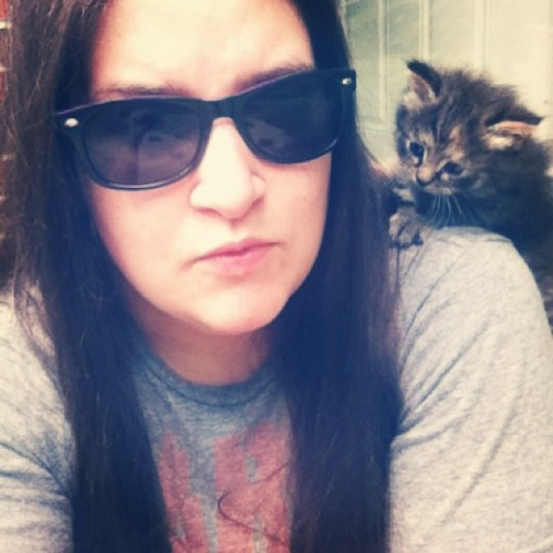 countmysinsclosemyeyes:  There's a kitten on my shoulder!  #kitten