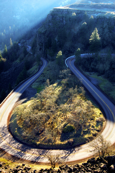 wild-earth:  I'd love to bike down this road.
