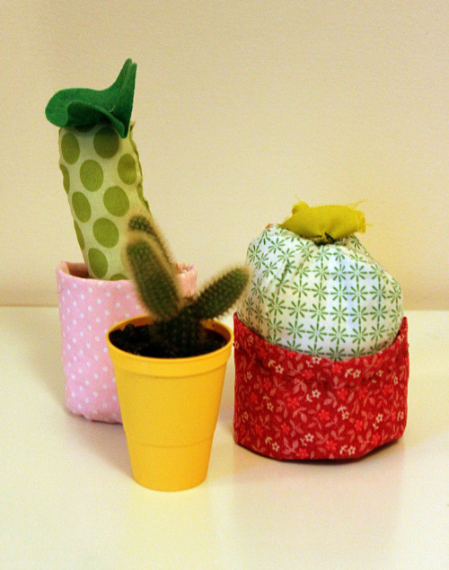 CUDDLY CACTI (by tuesday blouse) haven't put anything on flickr for a long time, but here are some cuddly cacti for you