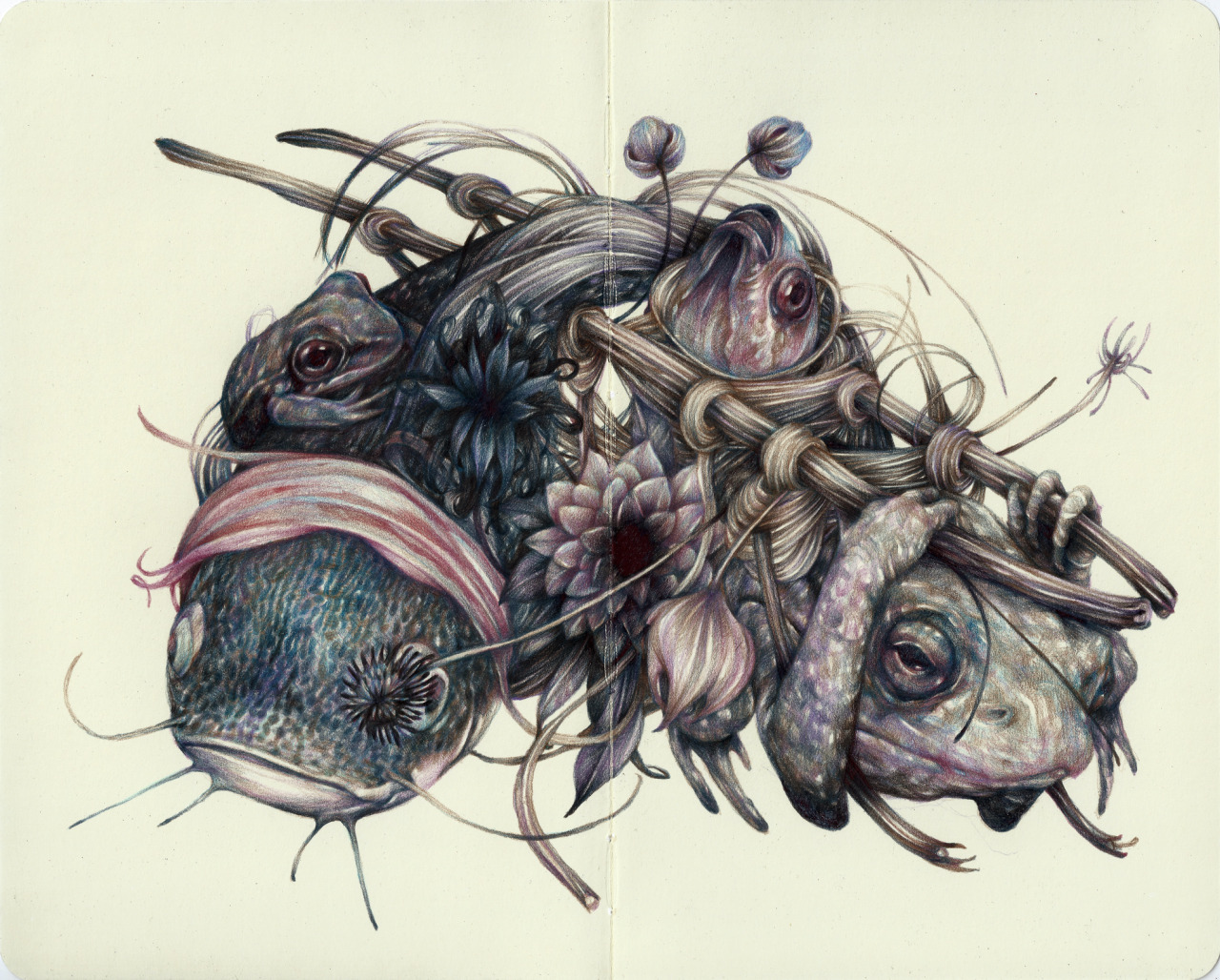 "marcomazzoni:  ""The Father"" 2014, colored pencils and ink on moleskine paper. soon..  Thinkspace Gallery   Another stunning piece by Marco Mazzoni!"
