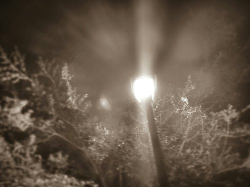 Streetlight#Evening #filtered #lights #Random #awesome(from @wuffster on Streamzoo)