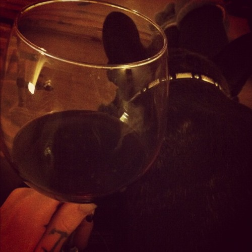 Perfect night. And FYI its a small dog and a small wine glass. Swears. ❤👍🍷#frenchbulldog