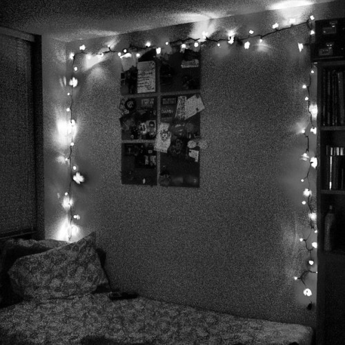 They are finally up #lights #christmas #love #beautiful