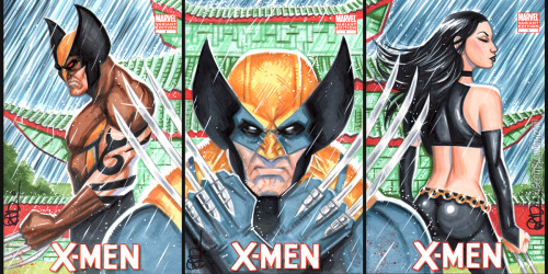 Wolverine Family set of 3 sketch covers