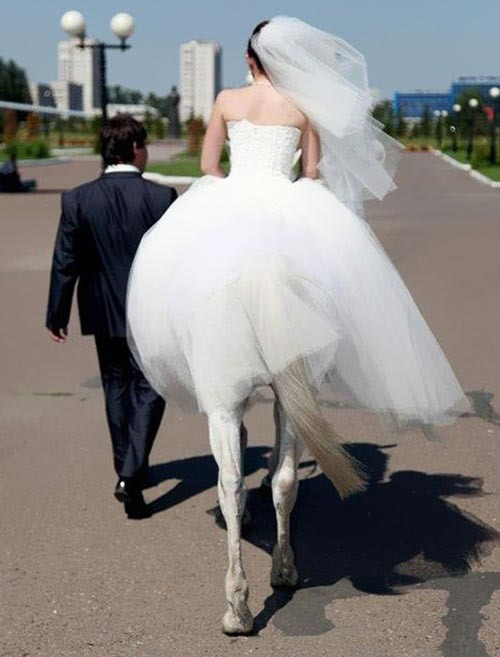 sassymelons:  overhumor:  wow she has really long le— wait  is she a centaur