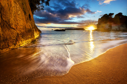 cavalierzee:  ~ Cathedral Cove Beach Sunrise Starburst ~By Daniel PeckhamLocation: Coromandel Peninsula, New Zealand