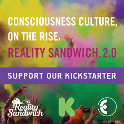realitysandwichmagazine:  We just launched a crowd-funding campaign to help Reality Sandwich build its media platform and stay at the edge of the transformative cultural movement. Our community is engaged, and we want to rise even higher.
