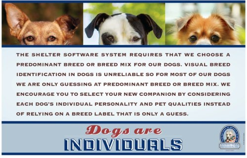 iamthemajority:  Does your shelter software system force you to guess at breed labels? Shepherd Mix, Lab Mix, Pit Mix, Chow Mix, etc.: what do those labels really tell us about the dogs and are they distracting adopters from getting to know the dogs as individuals first?  At Animal Farm Foundation, we regularly hear from shelter workers who would prefer to describe their dogs as individuals, some of which are breed unknown, but the system won't allow it. We can't force software companies to reprogram their systems, but we do have a tool to help you! Our posters are designed to start conversations with your adopters about the importance of looking at an individual dog's personality and needs, rather than relying only a breed label (or a guess) to give them accurate information.Print this poster and hang it up in your shelter or print out the smaller cards and hang them on the kennels (hint: laminate them so they're easy to reuse!). You can print this right from our website, in color or black and white, on any 8.5x11 paper. And don't stop there: We post the same statement on all of our petfinder.com listings and you can too. Encourage your adopters not to get distracted by labels and to focus on getting to know the individual dogs instead!