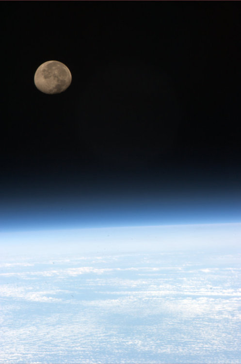 colchrishadfield:  Moonset, one of 16 per day on ISS, all marvelous to see.