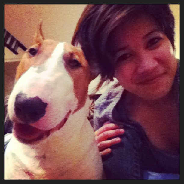 Me and my lover boy. He's just so effing cute! 😍 #leothebullterrier #puppylove #bullterrier