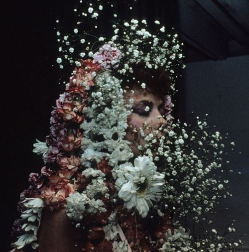 thegreatinthesmall: