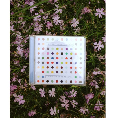 your-heart-dies:  love lust faith + dreams  ;~; *NEED*