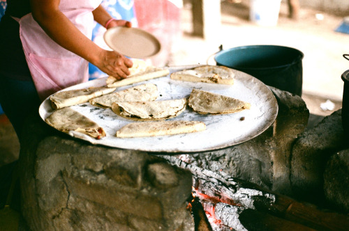 tearevor:  Quesadillas. Mainland Mexico.