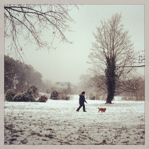 More #snow #uksnow falling on #LangdonPark #Teddington | #winter #winterwonderland #weather #instaweather #instaweatherpro  #sky #outdoors #nature  #instagood #photooftheday #instamood #picoftheday #instadaily #photo #instacool #instapic #picture #pic @instaplaceapp #place #earth #world #richmond #unitedkingdom #day #winter #morning #skypainters #cold #gb (at Langdon Park, Teddington)
