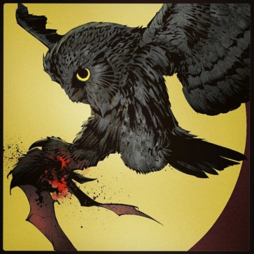 A corte das Corujas decretou sua morte. #owl #batman #night #nightofowls #bat #animal #hq #new52 #dc #claw #niteowl #eating