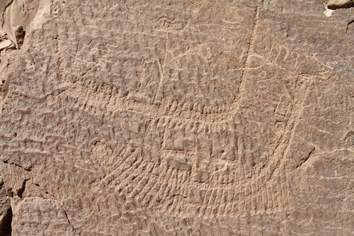 "scinerds:  Oldest Pharaoh Carvings Discovered in Egypt  The oldest-known representations of a pharaoh are carved on rocks near the Nile River in southern Egypt, researchers report. Look closely — standing on the top of this boat is a crowned figure who may represent Narmer, the first pharaoh to rule unified Egypt. Oarsmen propel the boat along. Credit: Stan Hendrickx, John Coleman Darnell & Maria Carmela Gatto The carvings were first observed and recorded in the 1890s, but only rediscovered in 2008. In them, a white-crowned figure travels in ceremonial processions and on sickle-shaped boats, perhaps representing an early tax-collecting tour of Egypt. The scenes place the age of the carvings between 3200 B.C. and 3100 B.C., researchers report in the December issue of the journal Antiquity. During that time, Egypt was transitioning into the dynastic rule of the pharaohs. ""It's really the end of prehistory and the beginning of history,"" in Egypt, study researcher Maria Gatto told LiveScience. Scenes of a ruler Gatto, a Yale University researcher, led the archaeologists who rediscovered the site in 2008. Archaeologist Archibald Sayce first sketched the carvings, found at the village Nag el-Hamdulab, in the 1890s, but the only record of Sayce's discovery was a partial illustration published in a book. The site was then forgotten until the 1960s, when Egyptian archaeologist Labib Habachi took photographs of the carvings, which he never published. It wasn't until one of these photos resurfaced in 2008 that Gatto and her team started searching for the site, which many people assumed had been destroyed in the interim. Some of the carvings have indeed been vandalized since the 1960s, but Gatto and her team found the etched rocks in a natural amphitheater west of Nag el-Hamdulab. They then compared the carvings to Habachi's 1960s photographs. There are seven carvings scattered throughout the area, and many are tableaus of boats flanked by prisoners. One of the most extensive carvings shows five boats, one of which houses the white-crowned pharaoh, his fan-bearer and two standard-bearers. Falcon and bull insignia on the pharaoh's boat symbolize royalty, further emphasized by the four men with ropes standing alongside that boat, likely towing it along the Nile. A hieroglyph labels this scene a ""nautical following,"" a likely reference to the following of Horus, Gatto said. In this periodic royal jaunt across Egypt, the pharaoh cemented power and collected taxes. Thus, not only do the carvings represent the oldest known vision of a pharaoh, they may also show the oldest Egyptian tax campaign. Other carvings include a scene of people and dogs herding cattle and a cluster of animals, two of them apparently some mythical part-lion beasts. The other animals are familiar native African species, including two ostriches, an ibex and a bull. Another scene shows the brewing and drinking of beer, perhaps a reference to a festival. Continue to Full Article"