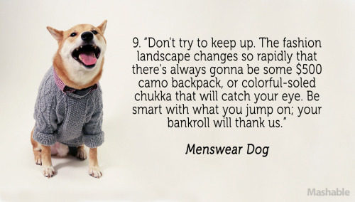 Menswear Dog's 10 Fetching Fashion Tips Read the full article here Images courtesy of Mashable, Bianca Consunji