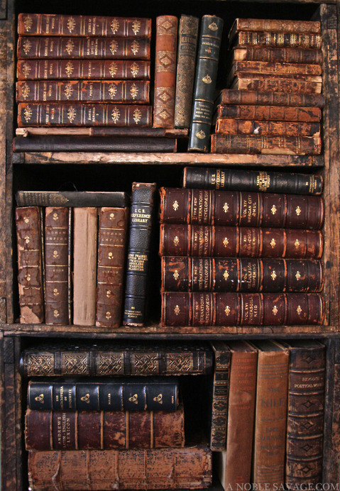 A room without books is like a body without a soul  ~Macruc Tullius Cicero~