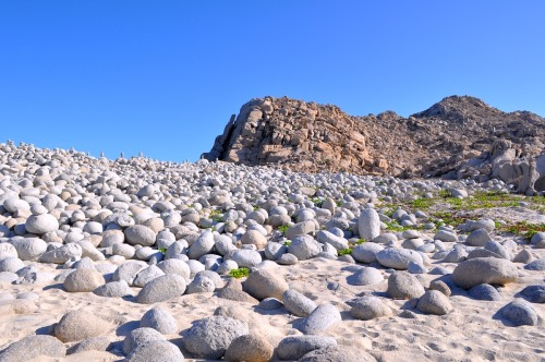 """Dinosaur Egg"" Beach, Baja California Sur. Also known as Playa La Sirenita, these rounded, egg-shaped granite stones litter this secluded beach near Cabo Pulmo, Mexico."