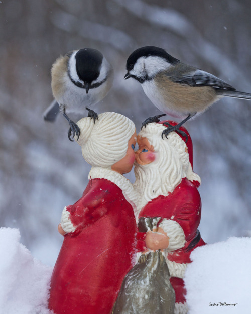"""Have you a kiss on your list ?"" by Andre Villeneuve"